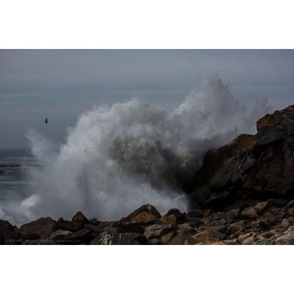 Κύματα 4
